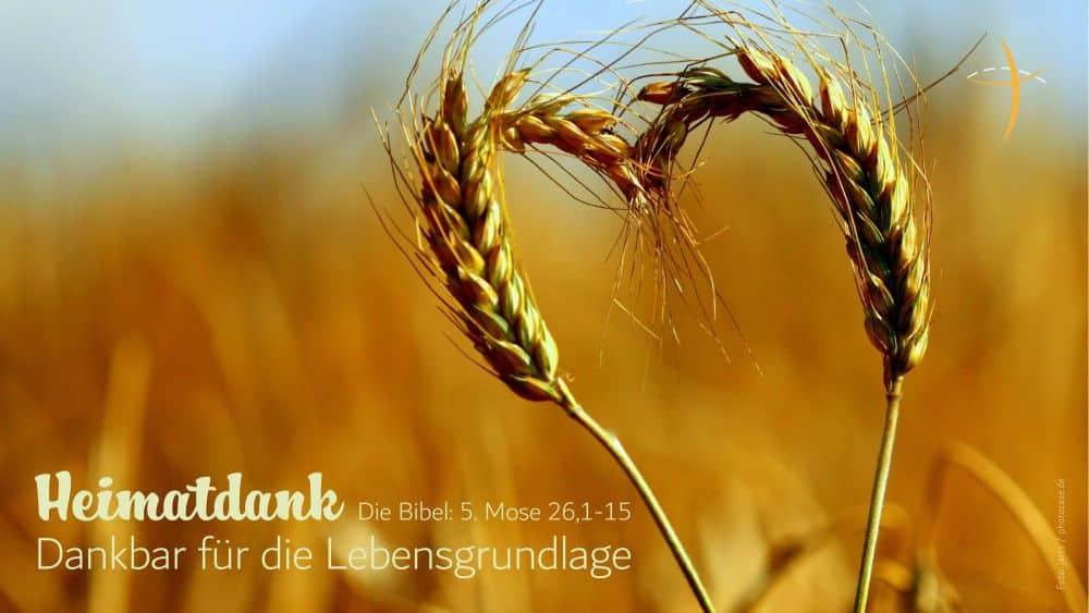 Heimatdank: Erntedank-GottesdienstHerzliche Einladung
